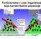 Funkcionalna i Lean organizacija koja koristi Hoshin planiranje