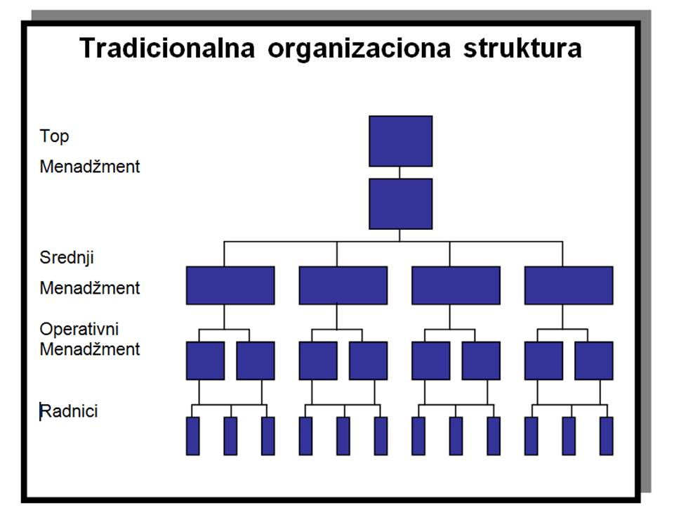 Tradicionalna organizaciona struktura